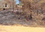 Venta de terreno en punto fijo - falcón cód.: 11_7233