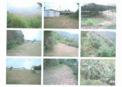 Vendo terreno 60 o 100 hectareas a 30 minutos de caracas
