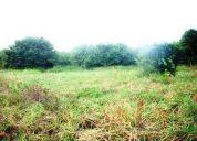 Rent-a-house vende terreno  en higuerote