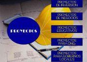 Elaboracion de proyectos economicos ante organismos financieros.