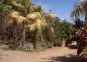 Terreno, parcelas, casas venta en guigue/valencia