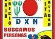 Dxn compaÑia de multinivel  aperturando venezuela sea  pionero.