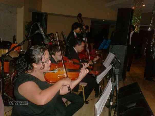 violines de ensueño en maracaibo zulia