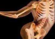 Especialistas en fisioterapia  rehabilitación física, centro móvil de rehabilitación