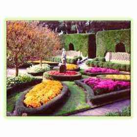 Mega curso de jardineria plantas flores hortalizas for Curso de jardineria