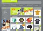 Pagina web profesional flash