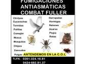 Fumigaciones combat fuller s.a presupuesto gratis productos antiasmatico y antialergicos