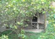 Casa en merida para turistas