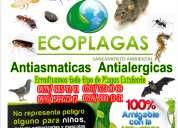 Fumigacion para erradicar garrapatas pulgas en maracaibo