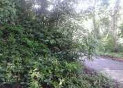terreno ubicado en naguanagua